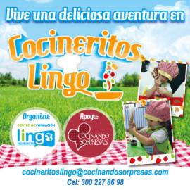 cocineritos-lingo-popup